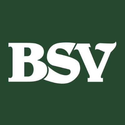 The Bank of Southside Virginia Company Logo